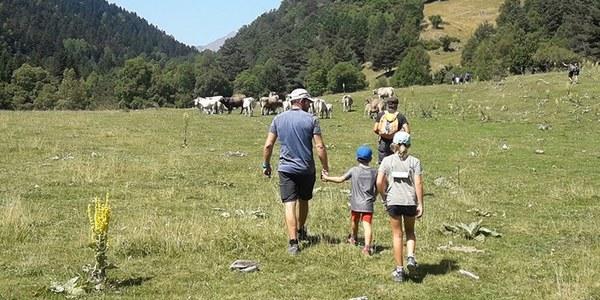 Posar-se en la pell dels pastors que viuen amb l'os: visites guiades al Pirineu